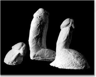 Plaster Cast Penis 72