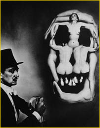 dali_skull-photo.jpg (19187 bytes)